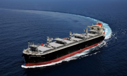 "Wood Chip Carrier ""SOUTHERN TREASURE"" Delivered  -Will Serve Hokuetsu Corporation-"